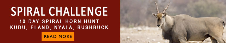 Hunting package Kudu,Eland, Nyala and Bushbuck in Limpopo