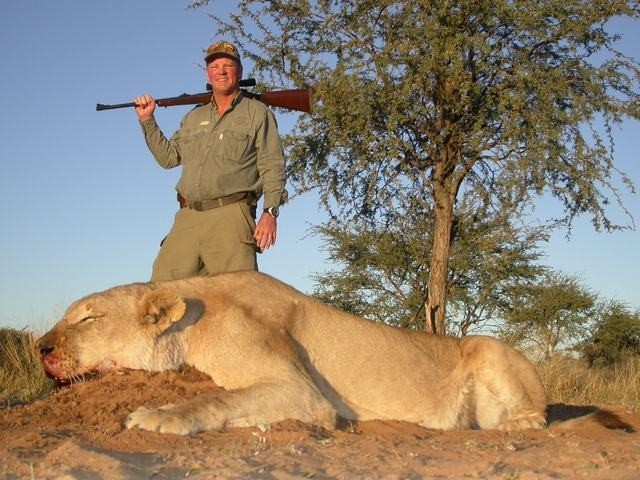 Lion hunting expert in south africa