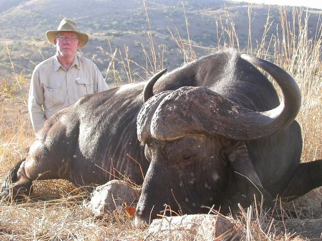 Big game hunting expert in africa